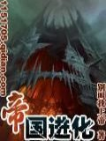 帝国进化小说封面