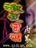 魂灵密码小说封面