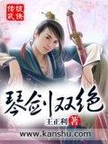 琴劍雙絕小說封面