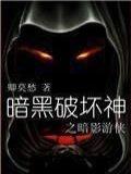 暗黑破壞神之暗影游俠