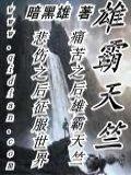 雄霸天竺小说封面