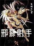 圣斗士之邪恶射手小说封面