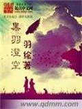 黑羽澄空小说封面