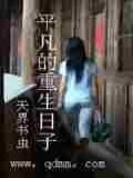 平凡的重生日子小说封面