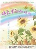 晴天里的向日葵