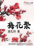 梅花聚的封面