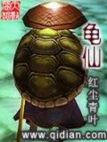 龟仙小说封面