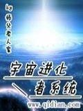 宇宙進化者系統