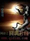 網游之圓滿升級小說封面